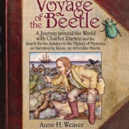 About the Voyage of the Beetle